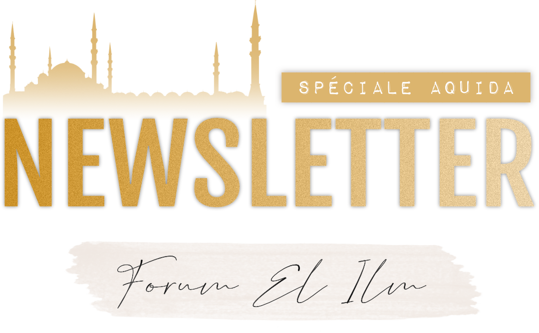 Newsletters  El_ilm10