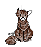 WindClan-Lager - Seite 51 Rost10