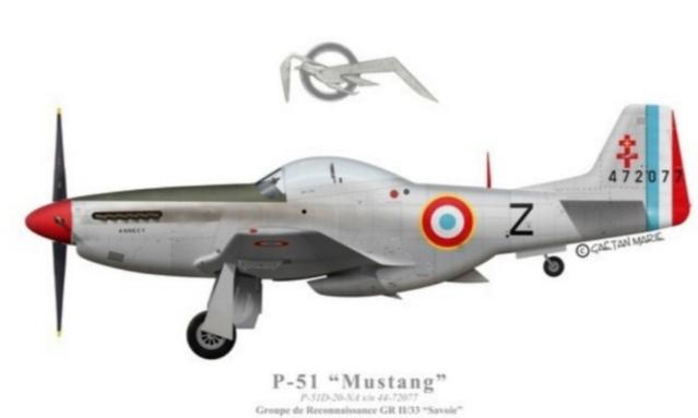 NORTH AMERICAN P-51 MUSTANG 20200937