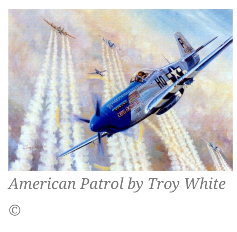 """From Spitfire, Me Bf 109 E, FW190 A, F4U Corsair, P-51 """"Blood Red Skies"""" to Wings Of Glory 20200953"""