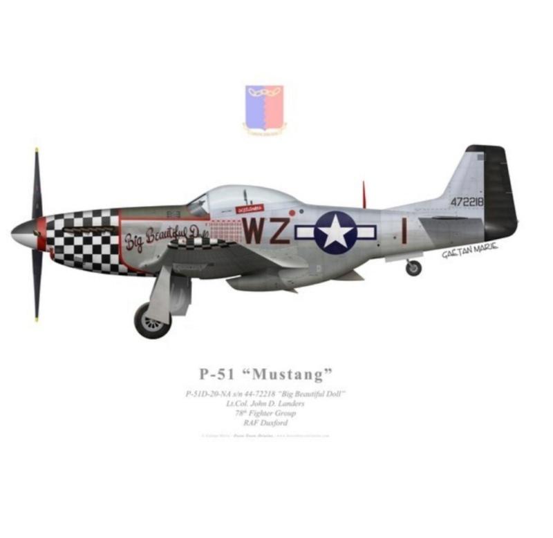 NORTH AMERICAN P-51 MUSTANG 20200972