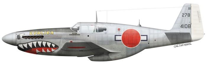 NORTH AMERICAN P-51 MUSTANG  Japan_10