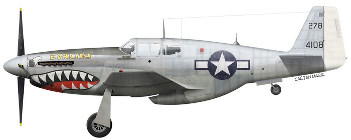 NORTH AMERICAN P-51 MUSTANG Us_p-511