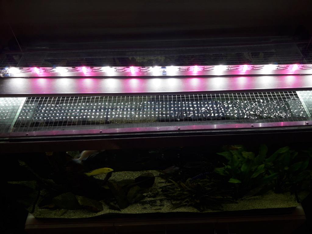 Réalisation rampe éclairage LED full spectrum. 20201210