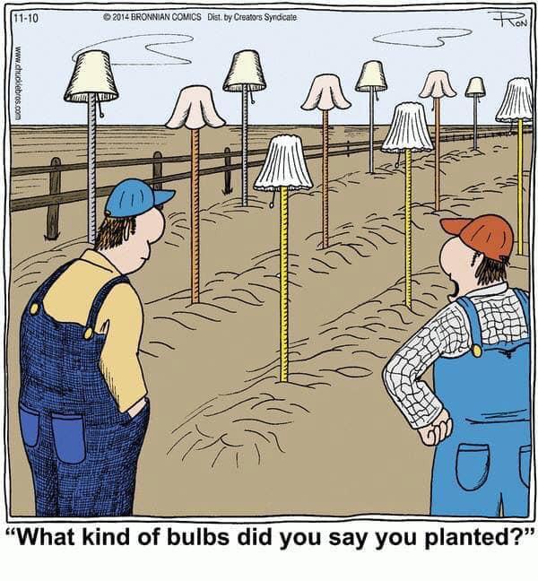 Senseless Banter... - Page 30 Bulbs10