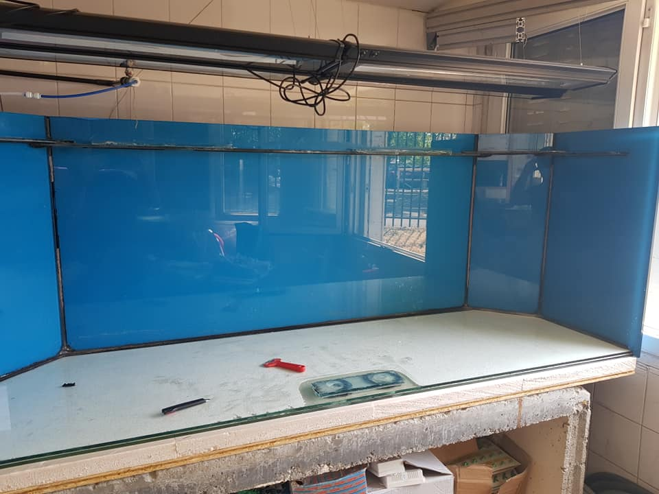 Divers créations d'aquarium 11016010