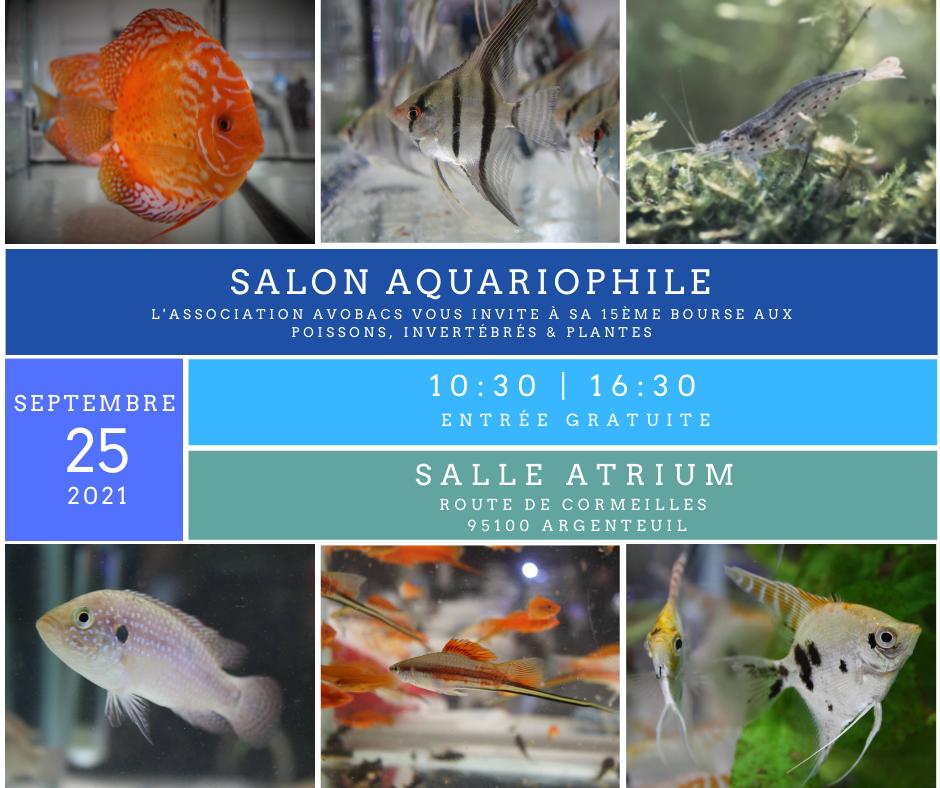 SALON/BOURSE AQUARIOPHILIE AVOBACS d'Argenteuil le 25 septembre 2021  23247110