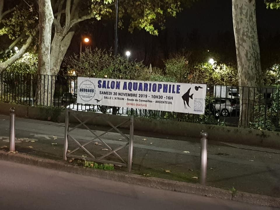 SALON/BOURSE AQUARIOPHILIE AVOBACS d'Argenteuil le 30 Novembre 2019 74484910