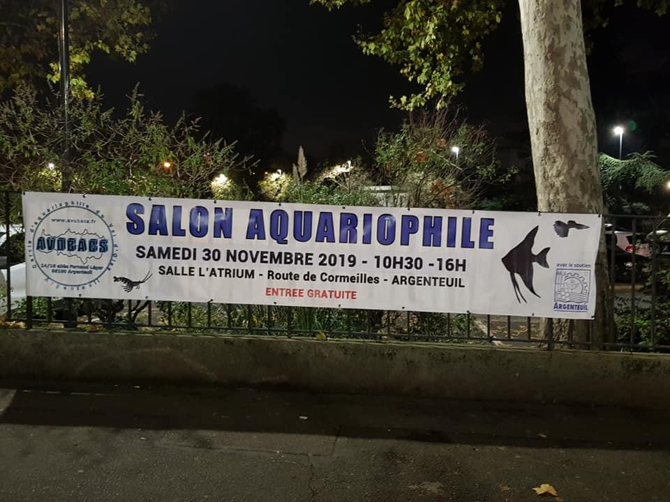 SALON/BOURSE AQUARIOPHILIE AVOBACS d'Argenteuil le 30 Novembre 2019 75424510