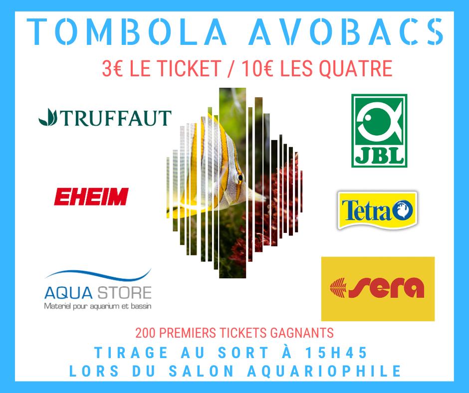 SALON/BOURSE AQUARIOPHILIE AVOBACS d'Argenteuil le 30 Novembre 2019 76612110