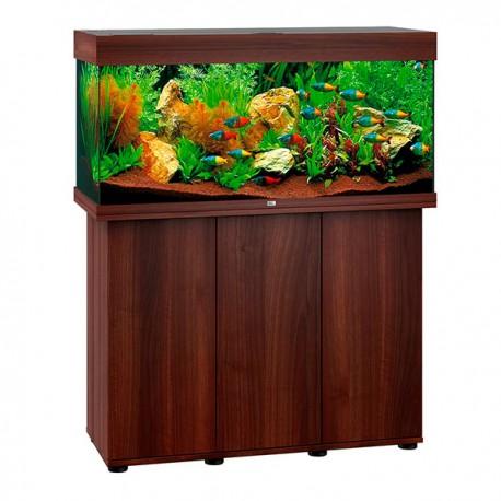 Projet aquarium amazonien Aquari11