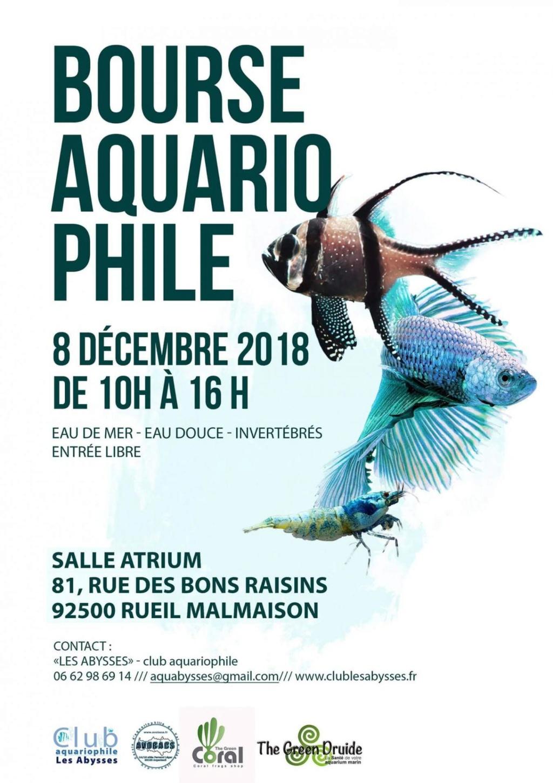 Bourse le 8 décembre 2018 du club les Abysses de Rueil Malmaison Fb-img10
