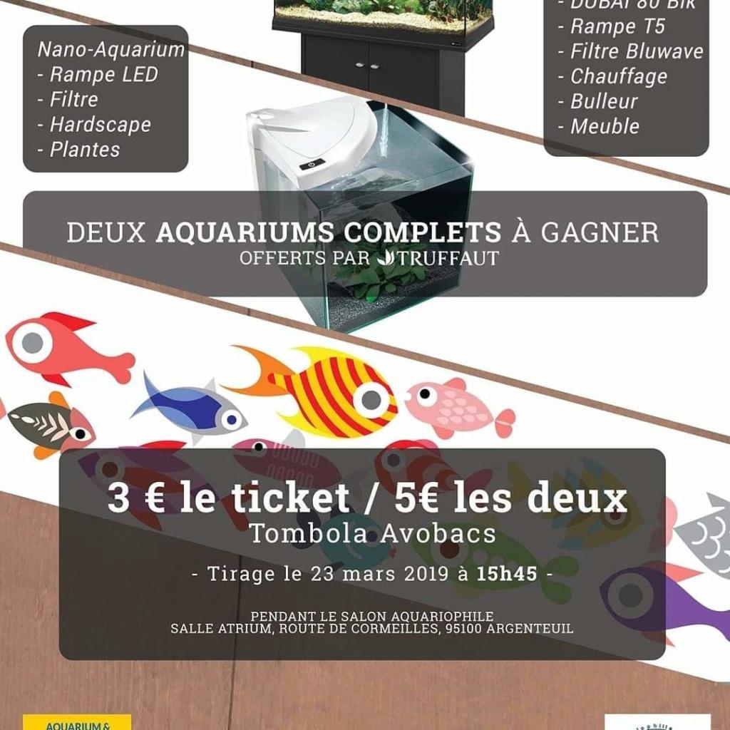 SALON/BOURSE AQUARIOPHILIE AVOBACS d'Argenteuil le 23 Mars 2019 Fb_img10