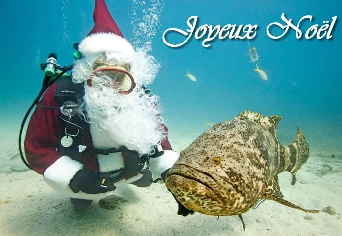 Bonnes fêtes à toutes et tous Image_10