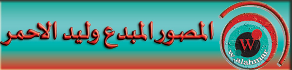 أخبار نجوم الفن والمشاهير  من المصدرمباشر نجمة العدد الناشطة والإعلامية شيراز محمد Iaoc-a12