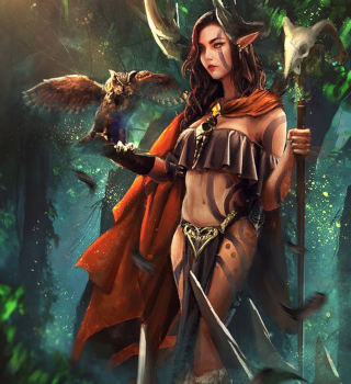 Játszható fajok és kasztok Druid10