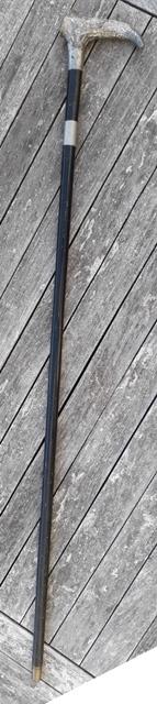 Canne épée 20200849