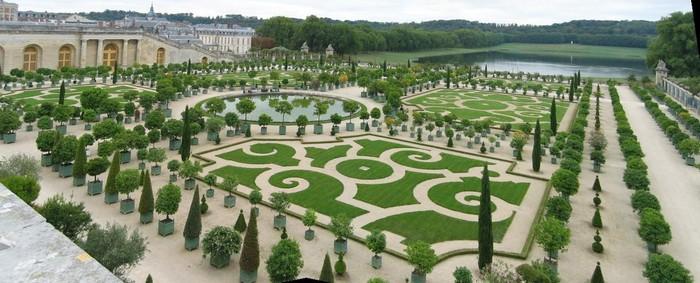Orangerie du château de Versailles 000_0283