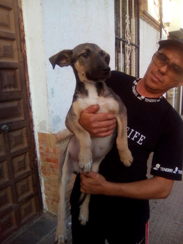 LEIKO - ES (Valverde) Img-2548