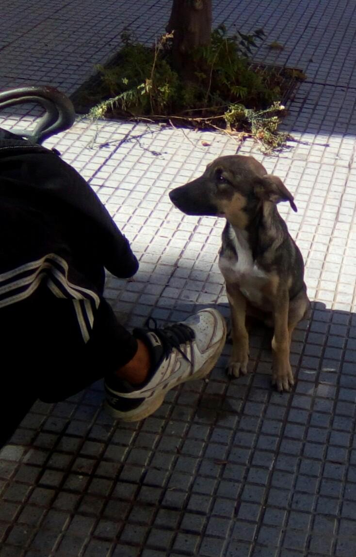 LEIKO - ES (Valverde) Img-2664