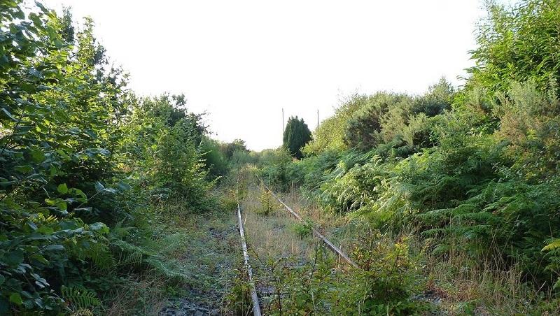 Ligne St Brieuc-Loudéac. un appel au nettoyage pour la sauver 09724c10