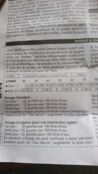 Traitement pourriture des nageoire de betta combattant  - Page 2 Dsc_2522