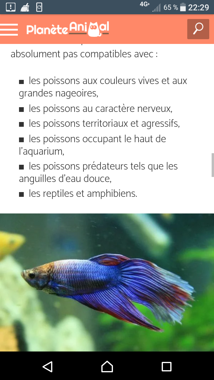 Mon aquarium Screen18