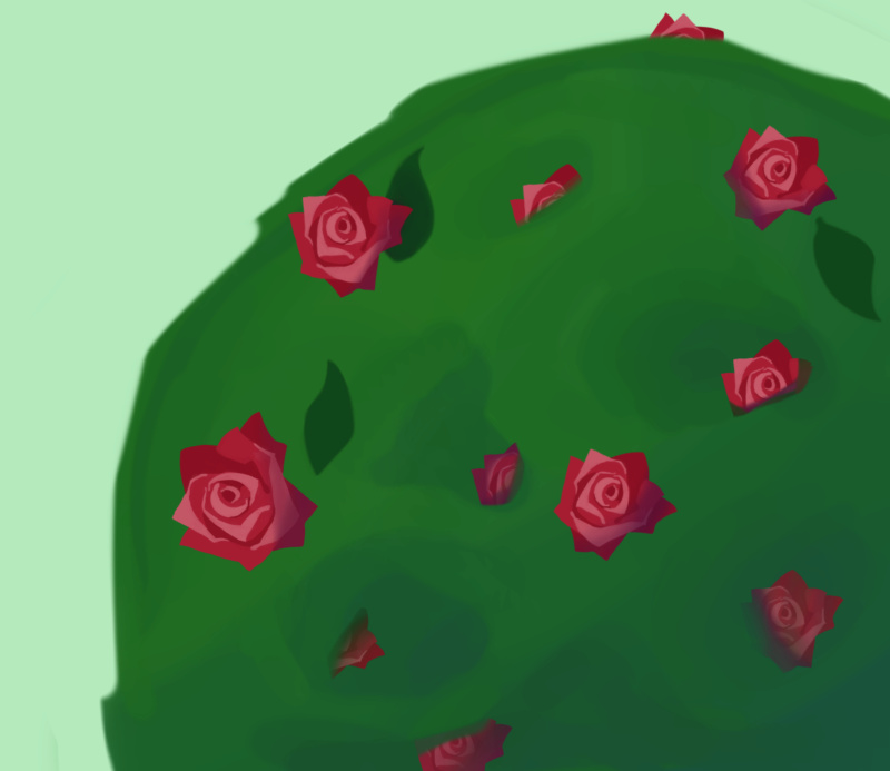 Sichelmond malt gerne - Seite 2 Rose_b14