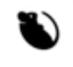 Antares 230 (Cygnus NG-11) - WFF - 17.4.2019 Oeil10