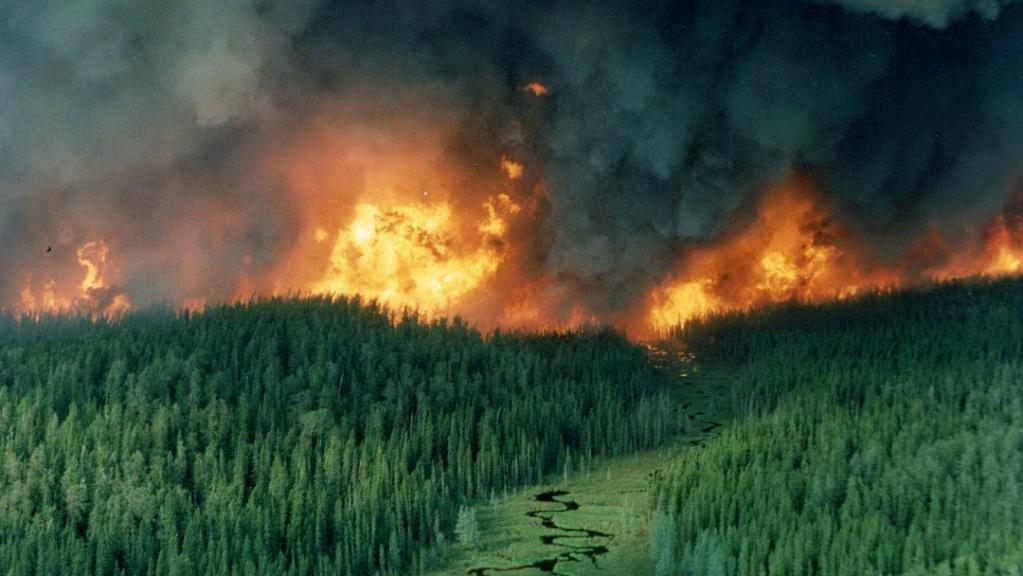 أقوى الكوارث البيئية التي حلت بالعالم عام 2018  82761-10