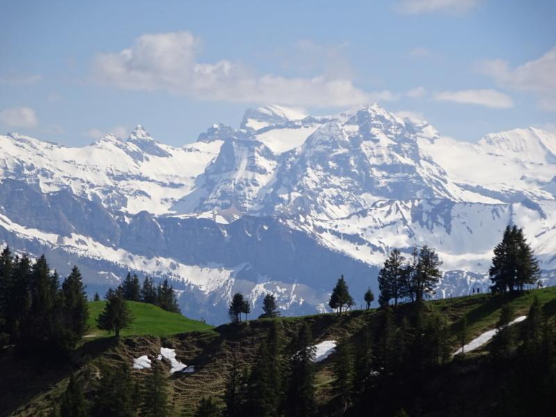 Lac des 4 Cantons, Mt Pélerin, 4 jours en Suisse (Mai-Juin 2019) Dsc00315
