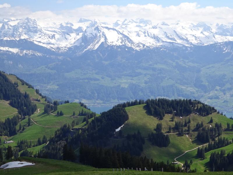 Lac des 4 Cantons, Mt Pélerin, 4 jours en Suisse (Mai-Juin 2019) Dsc00316