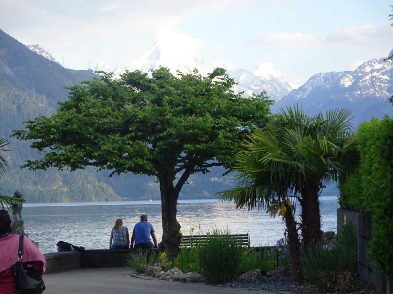 Lac des 4 Cantons, Mt Pélerin, 4 jours en Suisse (Mai-Juin 2019) Dsc00515