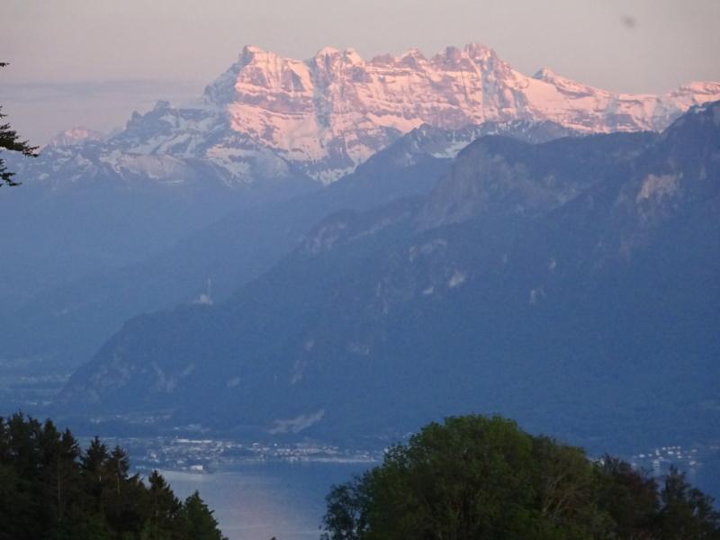 Lac des 4 Cantons, Mt Pélerin, 4 jours en Suisse (Mai-Juin 2019) Dsc00616