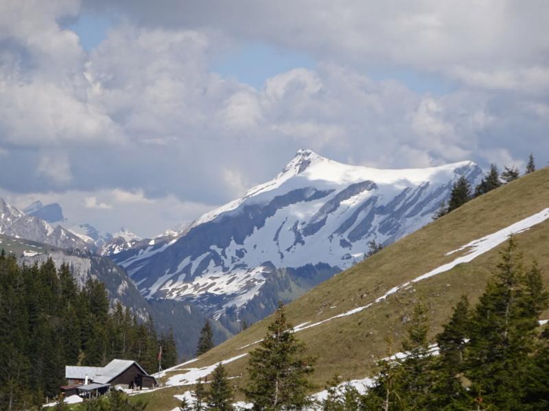 Lac des 4 Cantons, Mt Pélerin, 4 jours en Suisse (Mai-Juin 2019) Dsc09815