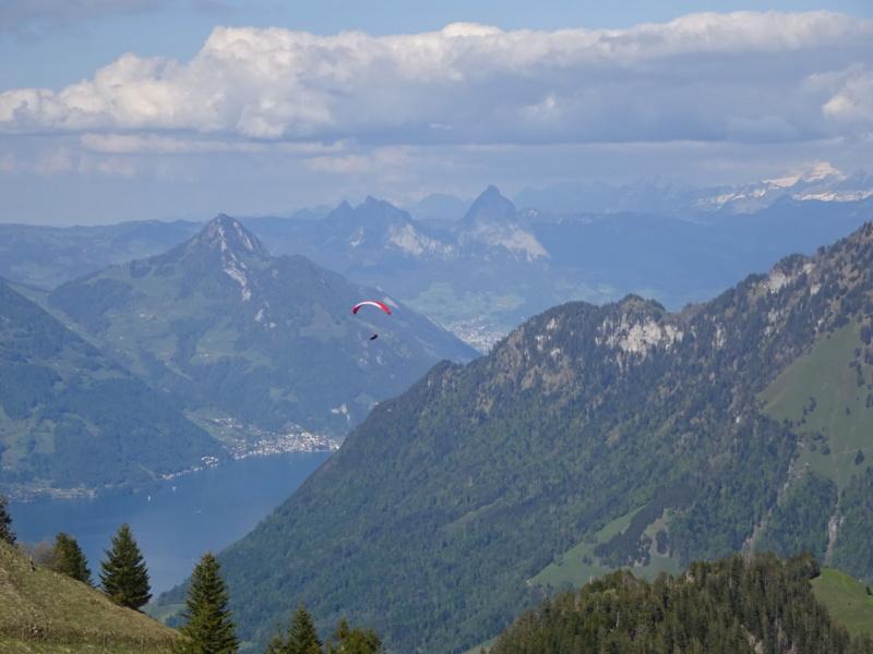 Lac des 4 Cantons, Mt Pélerin, 4 jours en Suisse (Mai-Juin 2019) Dsc09818