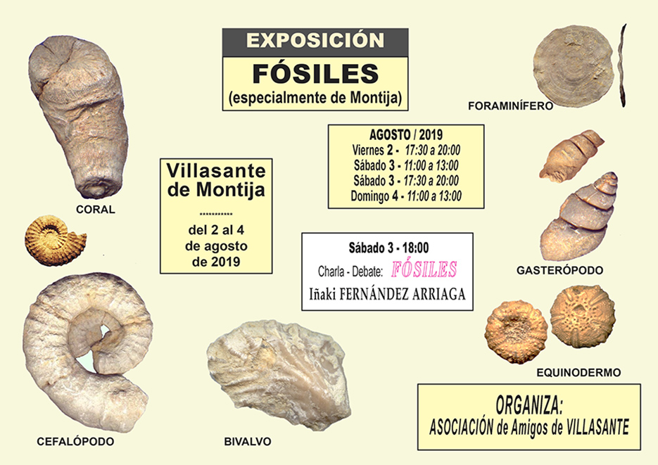 Exposición y charla sobre Fósiles de Burgos  Cartel10