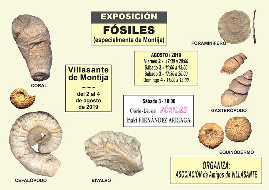 Exposición y charla sobre Fósiles de Burgos  Cartel11
