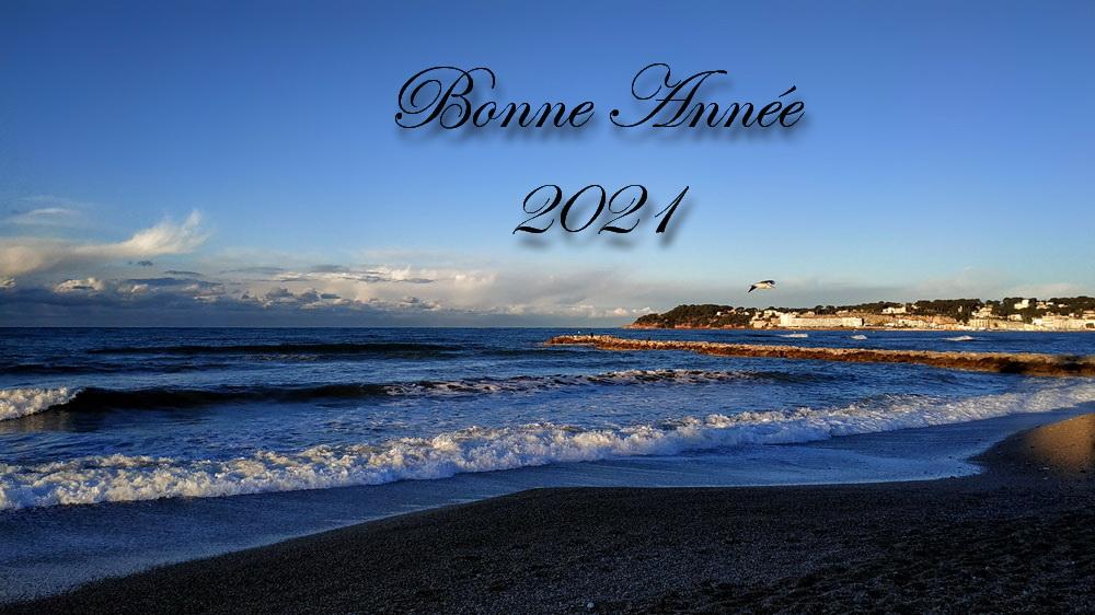 Bonne Année  202110