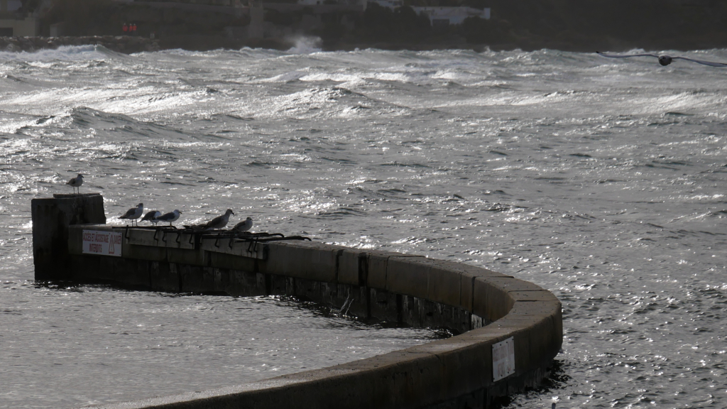Fin de tempête en baie de Sanary Baie210