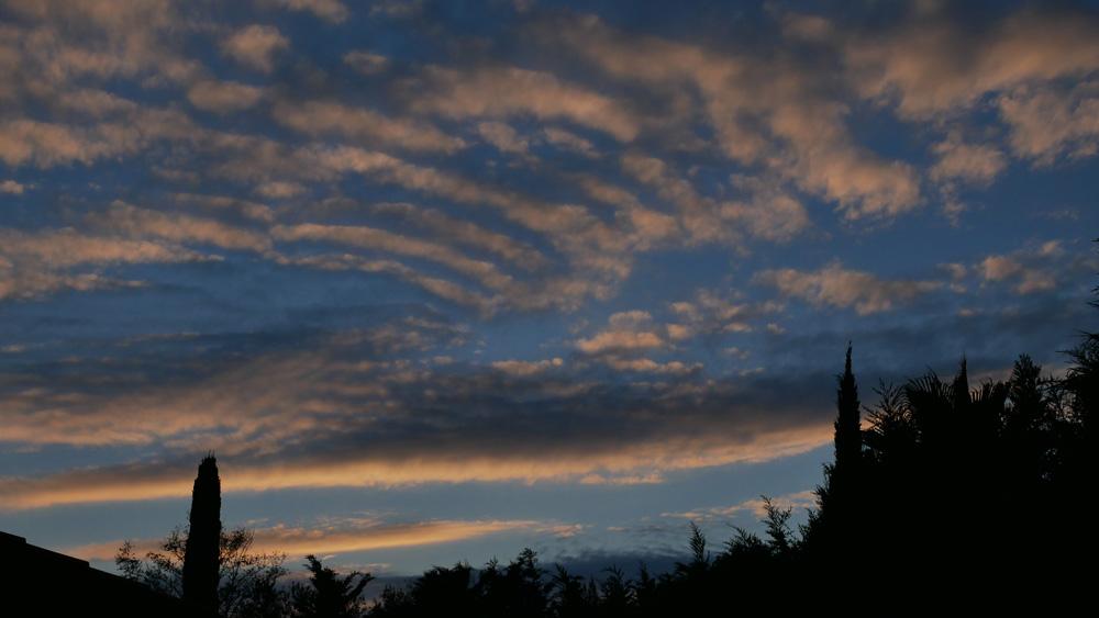 Confinement 1 photo jour à partir du 1 novembre - (FIL OUVERT A TOUS) P1060210