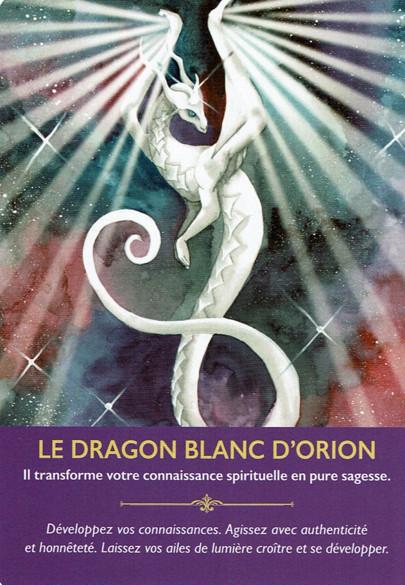 Les dragons Dragon10