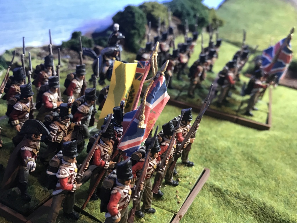 Une division d'infanterie de Sa Très Gracieuse Majesté Img_4924