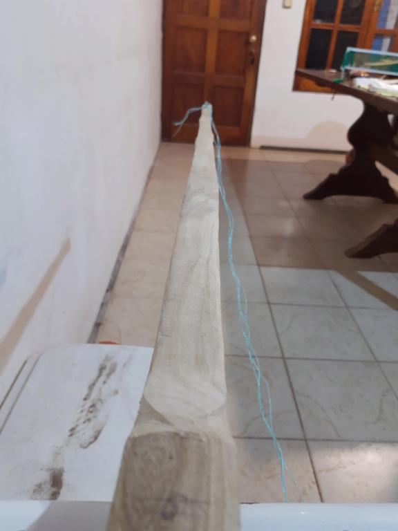 Arco de fresno, ayuda Img_2010