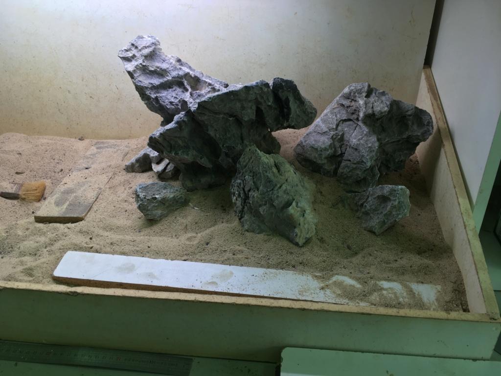 IWAGUMI 84L (premier aquarium) ! 39b6b110