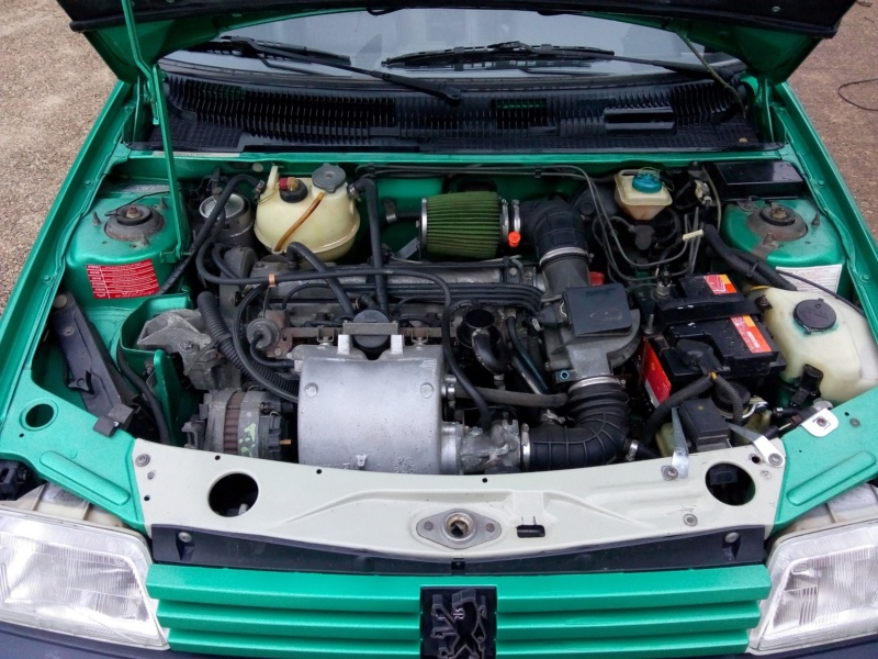 [18] 205 GTI Griffe - 130cv - AM 91 - Vert Fluorite 2052_110
