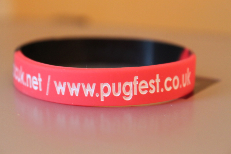 [ENG]Voyage Pugfest 2014 : notre aventure anglaise Img_9611