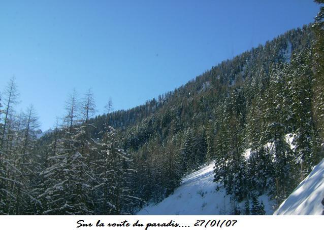 """Photo paysages """"printemps"""" Juin 2007 Oliv_d10"""
