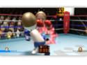 [Console]   Wii  (Nintendo)  2006. Wiispo13