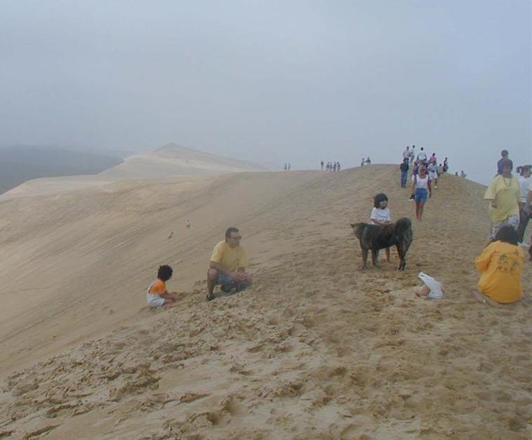 Dune du Pilat(33) (La plus haute dune de sable d ' Europe) Dune10